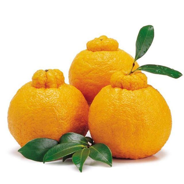 10种世界高价值珍稀水果,听说能认出3种的就被封为超级牛人!